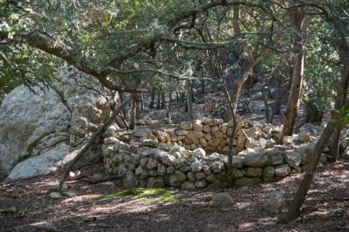 Köhlerplätze liegen am Wanderweg
